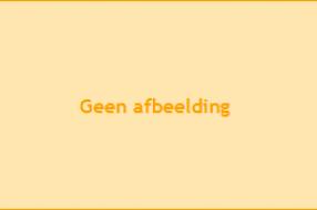 WK-knuffelauto voorzien van Oranje tapijtjasje: 'Iedereen kijkt je aan op de weg'